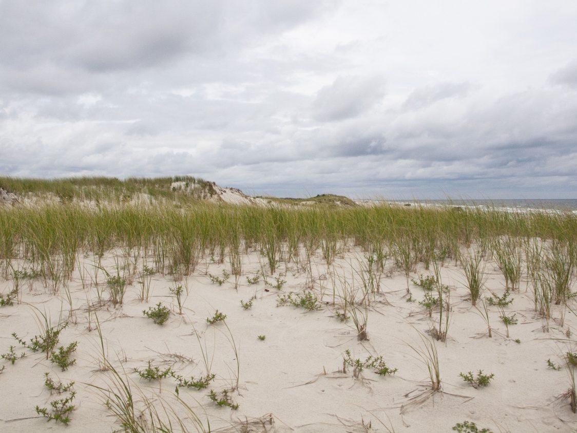 Rutgers EOAS to Recieve $3 Million for Coastal Resilience Program