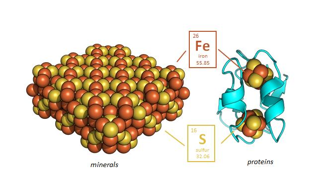 Iron- and sulfur-containing minerals found on the early Earth (greigite, left, is one example) share a remarkably similar molecular structure with metals found in modern proteins (ferredoxin, right, is one example). Did the first proteins at the dawn of life on Earth interact directly with rocks to promote catalysis of life? Image: Professor Vikas Nanda/Center for Advanced Biotechnology and Medicine at Rutgers