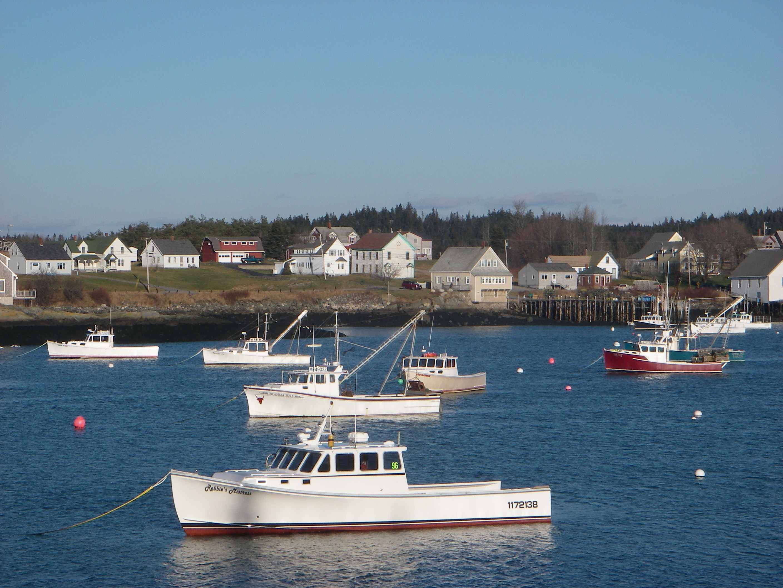 Lobster boats anchored off Cutler, Maine. Photo: Malin Pinsky/Rutgers University-New Brunswick