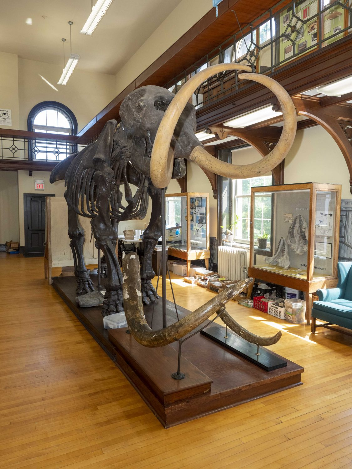 Explore the Poles at the Rutgers Geology Museum's 51st Annual Open House on 1/26/19