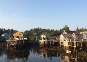 The fishing harbor at Matinicus Isle, Maine. Photo: Malin Pinsky/Rutgers University-New Brunswick