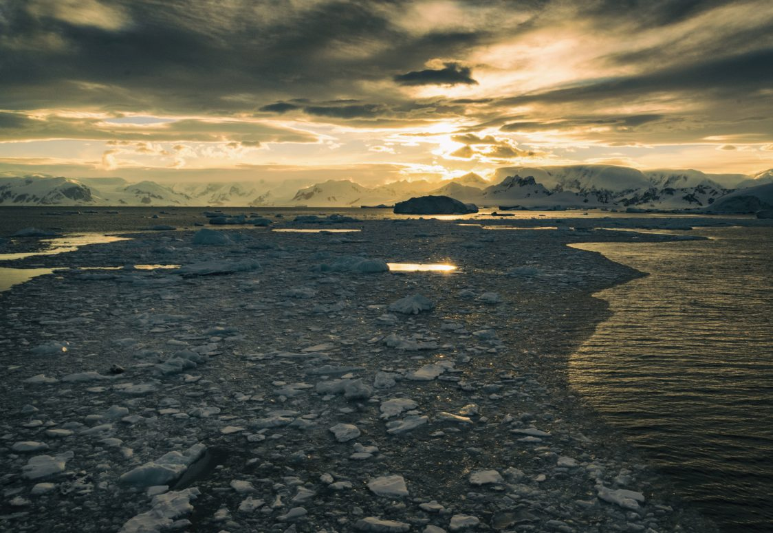 Morning sunlight reflects off sea ice along the West Antarctic Peninsula. Photo: Drew Spacht/The Ohio State University