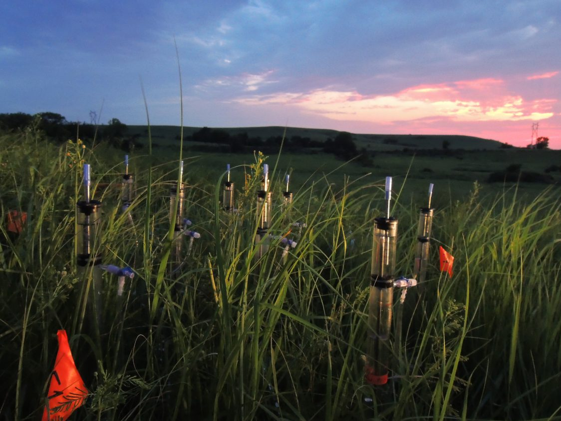 Increased irrigation by sprinklers at the Konza Prairie Biological Station in the Flint Hills of northeastern Kansas altered the soil pore system of a prairie soil. Photo: Edouard Sagues