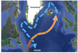 The warm North Atlantic Current (northernmost Gulf Stream) brings heat to northern Europe. It becomes colder and saltier, eventually sinking to form the cold North Atlantic Deep Water (NADW). Image: Yair Rosenthal