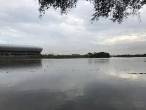 Bacteria that can help defuse highly toxic dioxin in sediments in the Passaic River – a Superfund hazardous waste site – could eventually aid cleanup efforts at other dioxin-contaminated sites around the world, according to Rutgers scientists.