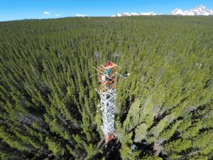 A tall tower with instruments to measure carbon dioxide and light at Niwot Ridge, Colorado. Photo: Christian Frankenberg