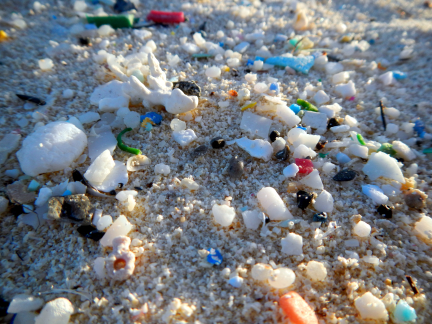 https://www.rutgers.edu/news/microplastic-sizes-hudson-raritan-estuary-and-coastal-ocean-revealed